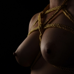 Golden Rope III - Color